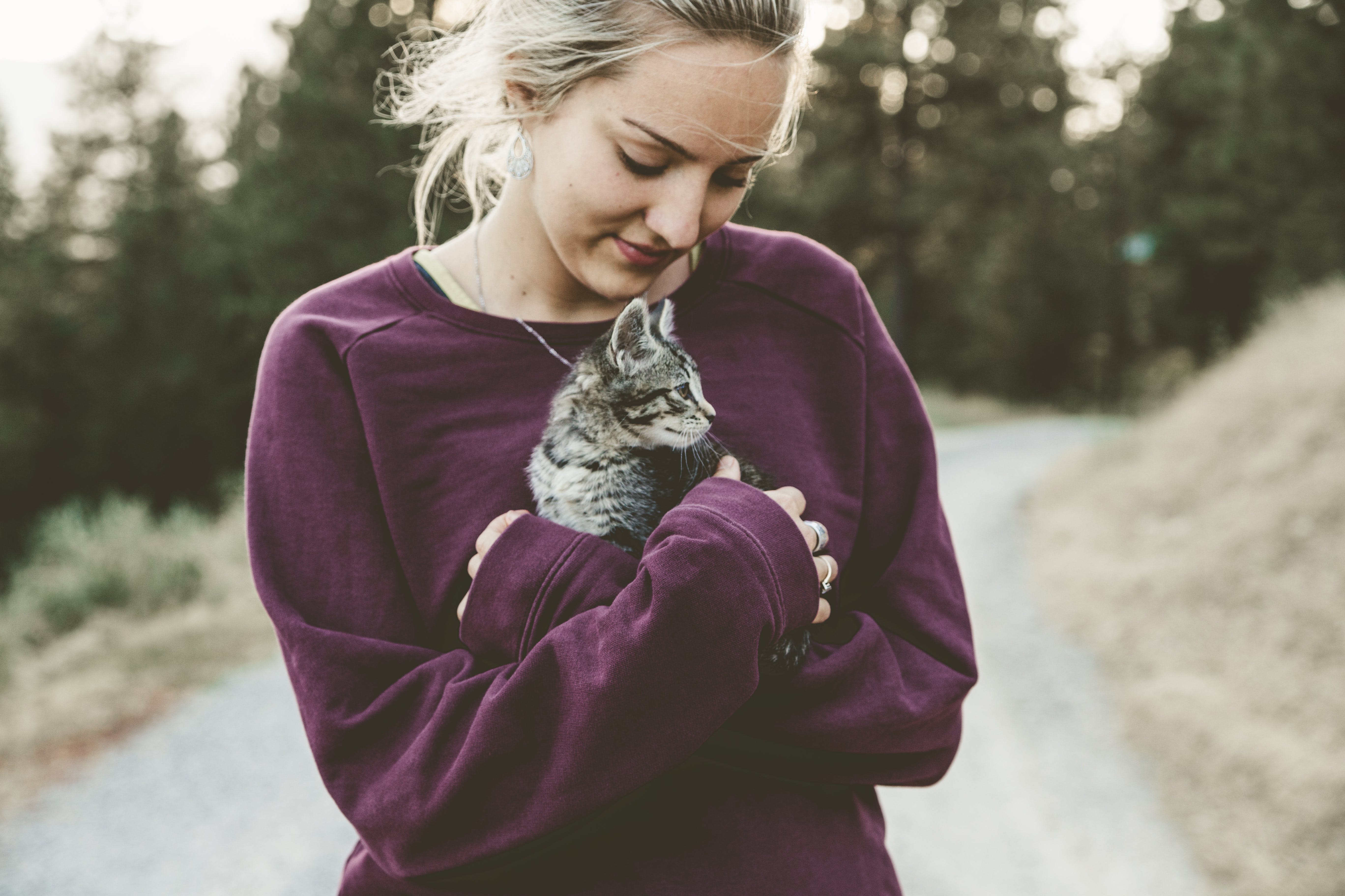 Selective Focus Photography of Woman Wearing Purple Sweater Holding Silver Tabby Cat