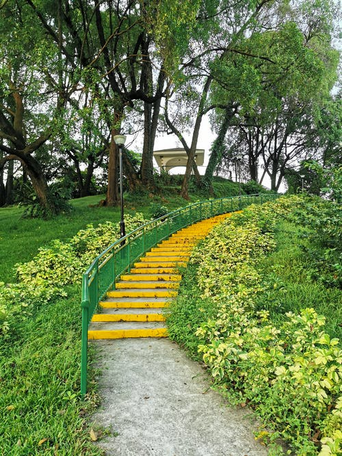 Free stock photo of fence, flight of stairs, gardens