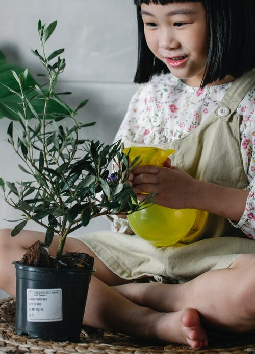 Cute ethnic girl spraying plant at home