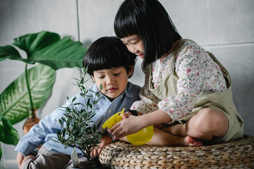 Little ethnic children spraying lush plants