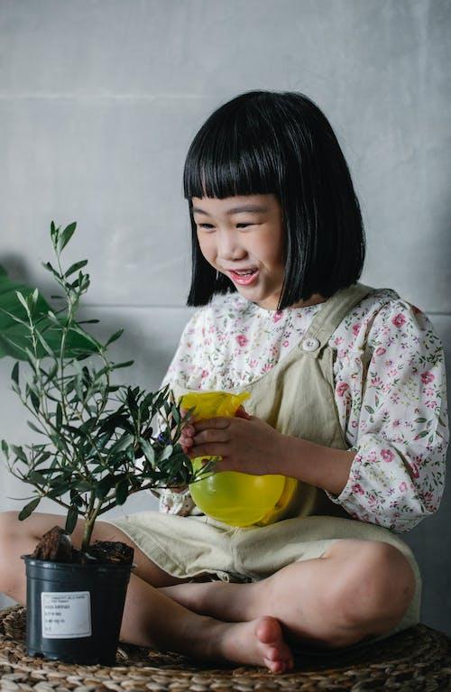 快樂的民族孩子在家裡澆水盆栽的植物