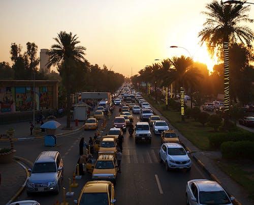 Free stock photo of alzawraa, baghdad, golden sunset