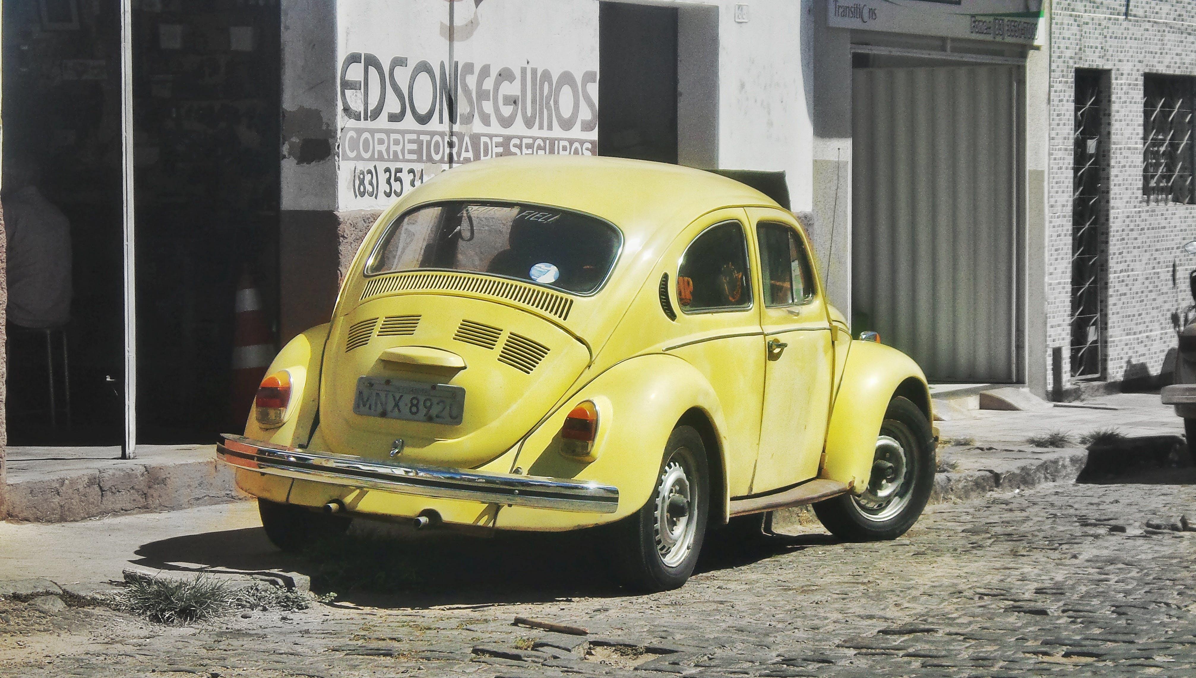 Free stock photo of beetle, street photo, Volks, volkswagen