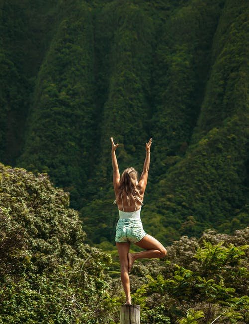 Anonymous woman standing in Vrksasana pose while practicing yoga in nature