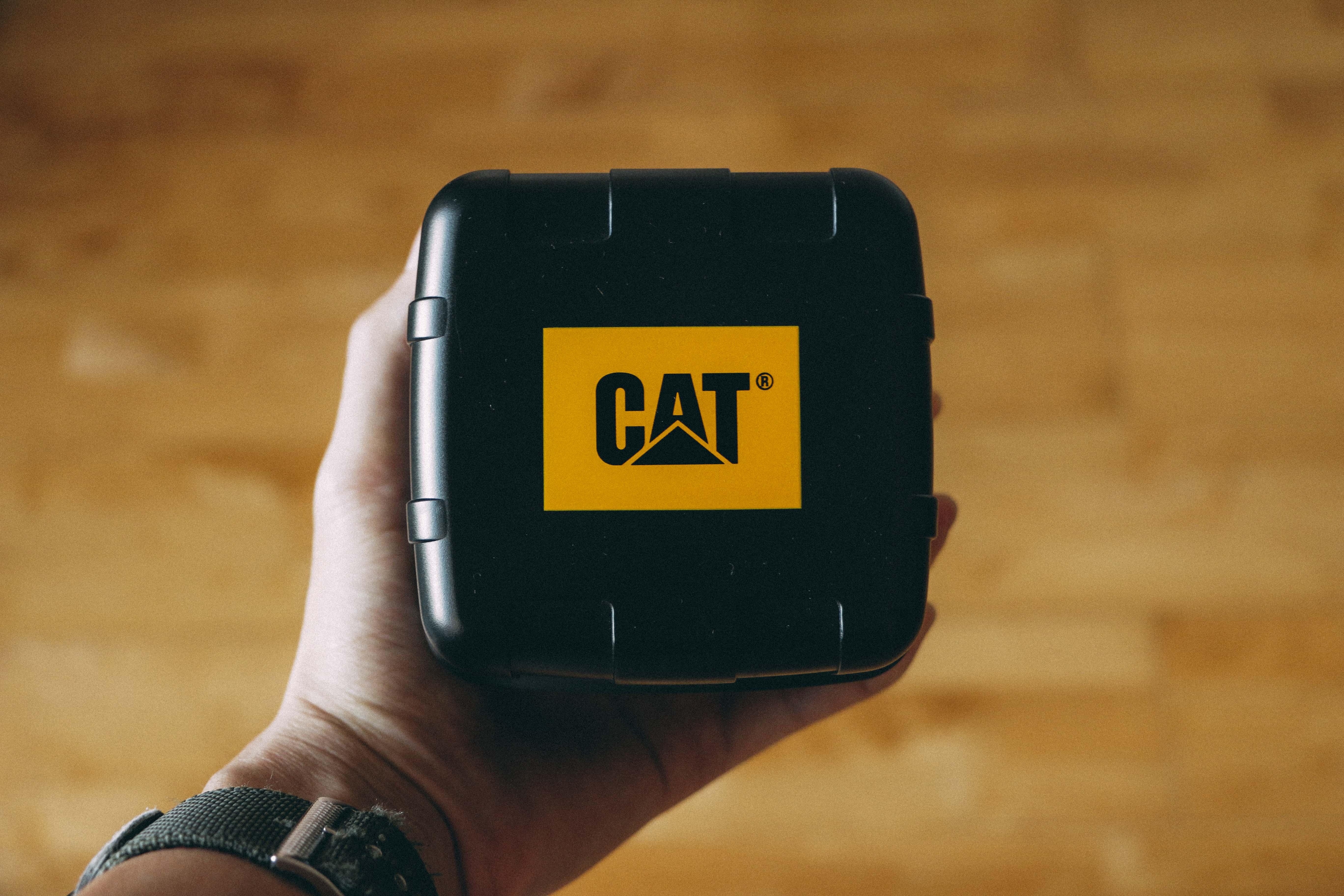 Person Holding Black Cat Case
