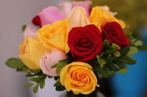 Close-Up Shot of Rose Flower Arrangement