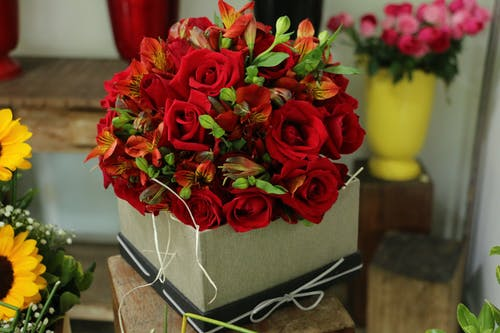 Close-Up Shot of a Box with Red Roses