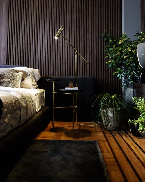 Modern interior design with comfy bed stylish lamp and carpet near lush houseplants