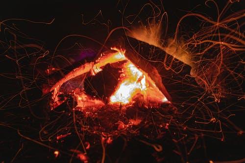 Free stock photo of fire, fogata, fuego