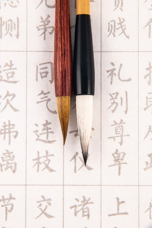 Set of calligraphy brushes on paper with hieroglyphs