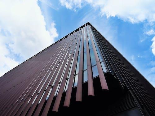 Kostenloses Stock Foto zu architektur, aufnahme von unten, glasartikel, himmel