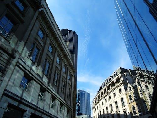 低角度拍攝, 城市, 市中心, 建築 的 免费素材照片