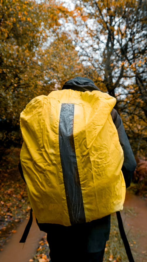 Anonymous traveler with backpack walking in autumn forest