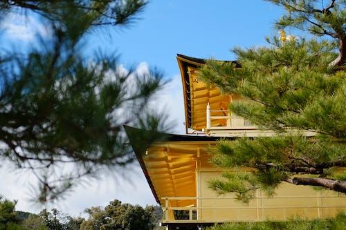 Foto stok gratis antara, atap, bangunan, biru
