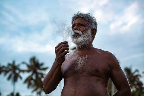 Kostnadsfri bild av äldre, dagsljus, festival, gryning