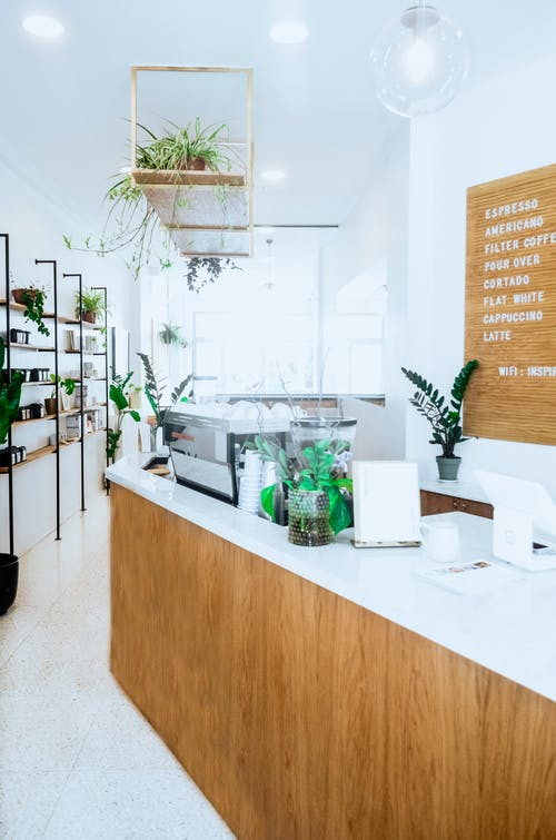 Interior of contemporary cafe with white walls and wooden elements and green potted plants