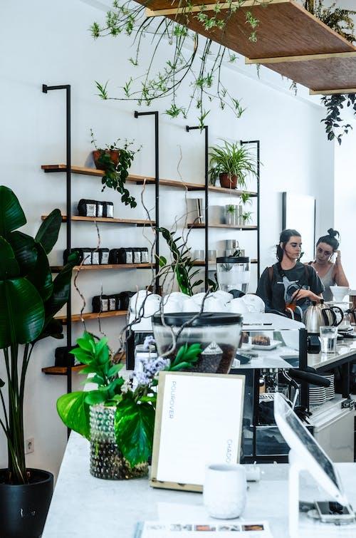 Creative cafe with minimalistic interior