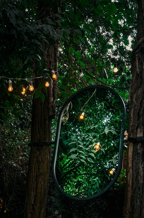 Big mirror hanging between green trees with garland with lighted lanterns in park