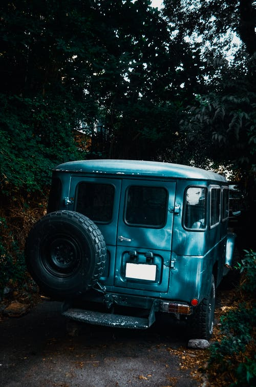 Old blue car placed in green forest