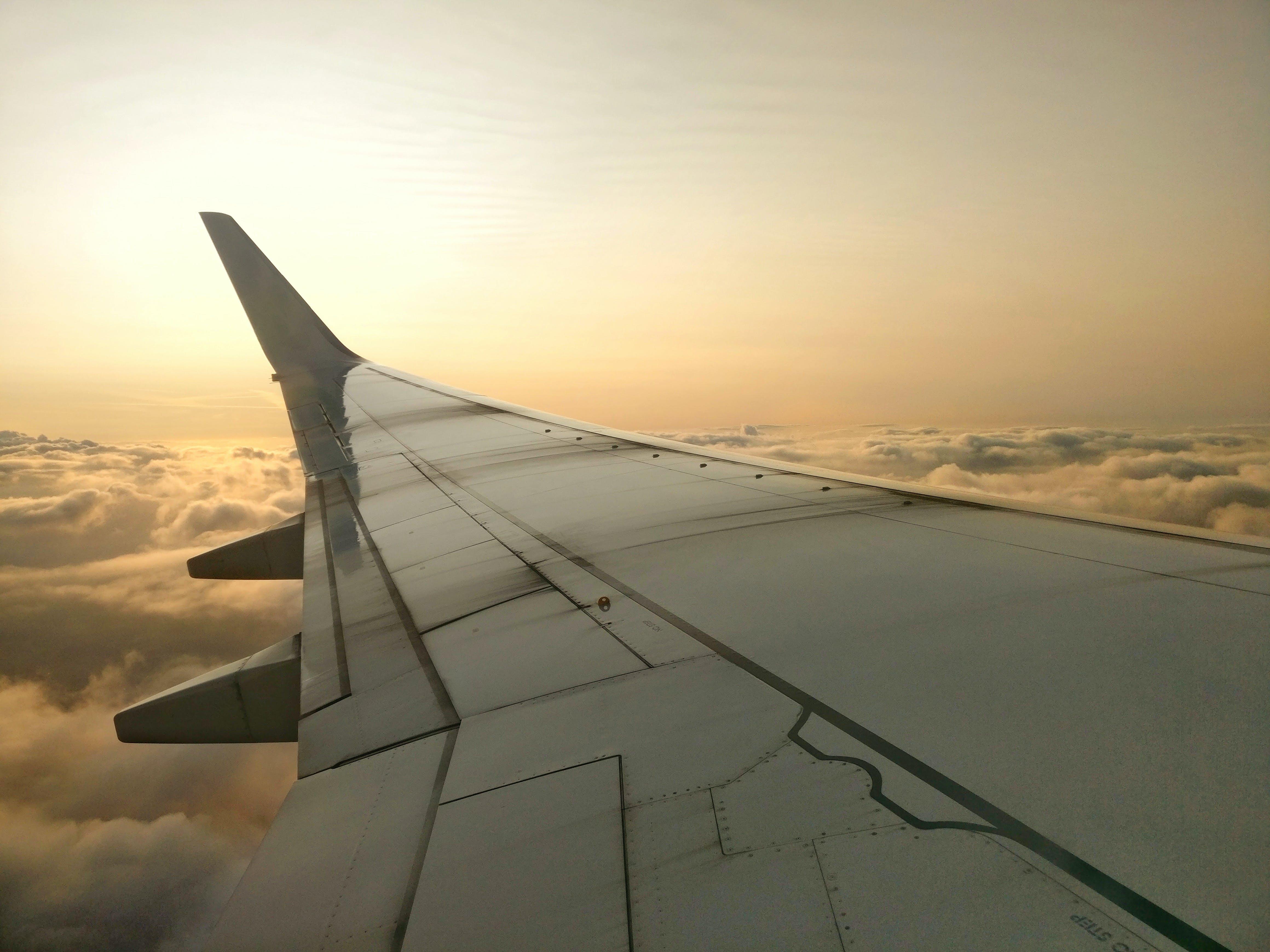 aeroplane, aircraft, aircraft wing