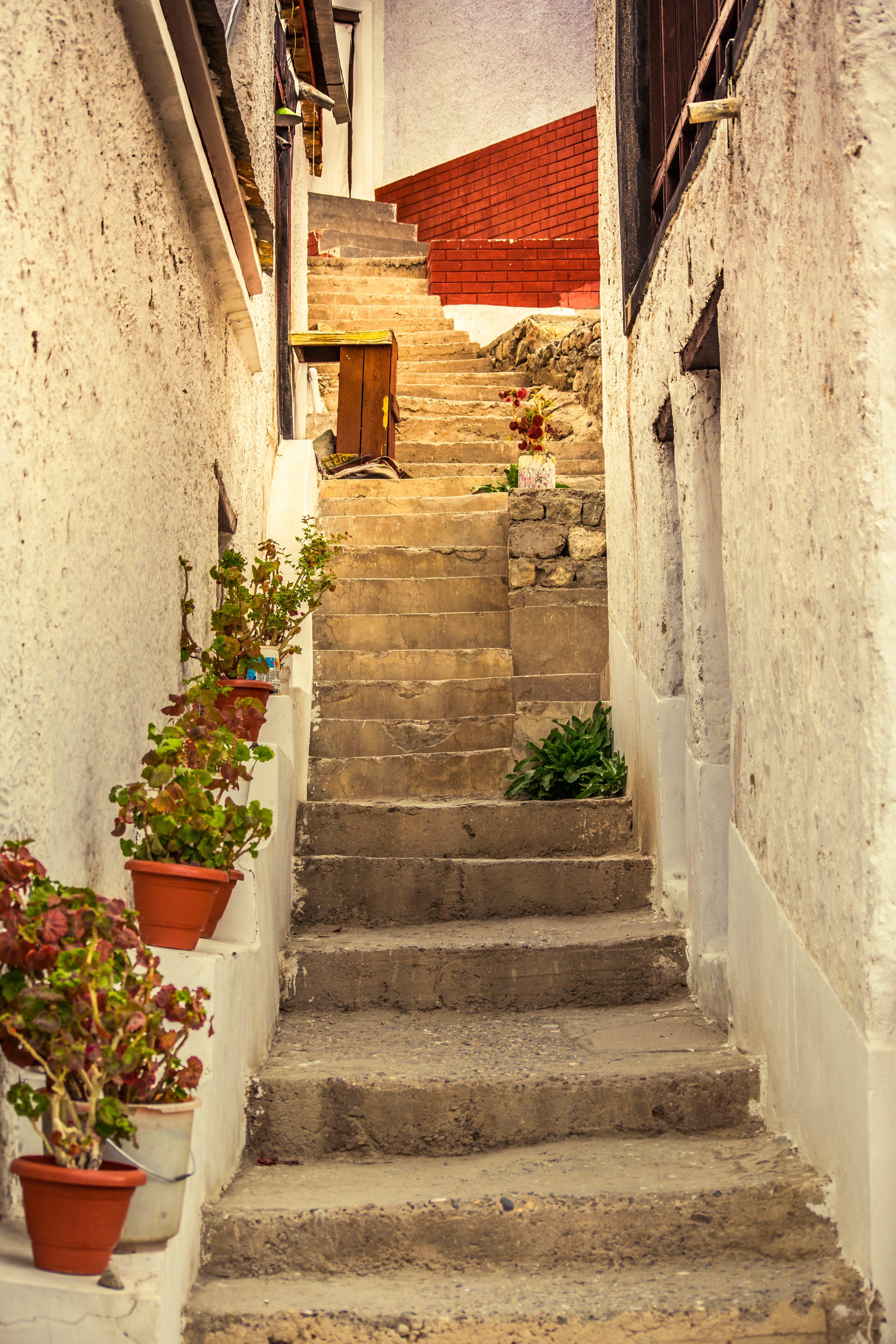 Free stock photo of stairs, steps, way, alley