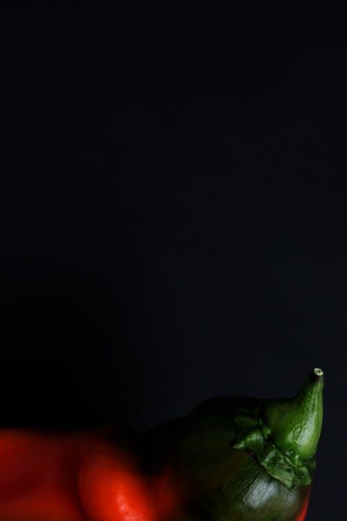 緑と黒の鳥の置物