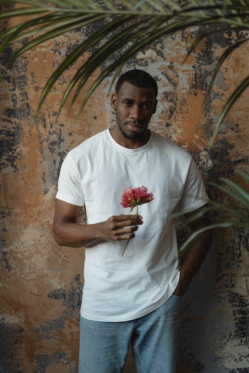 Foto stok gratis baju putih, bunga, halus