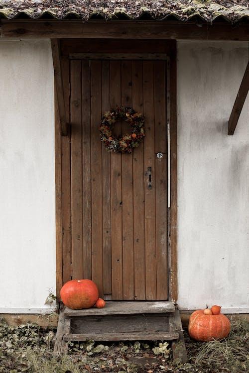 Pumpkins on Brown Wooden Door