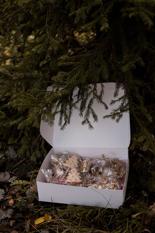Close-Up Photo of Gingerbread Cookies in a Box near the Christmas Tree