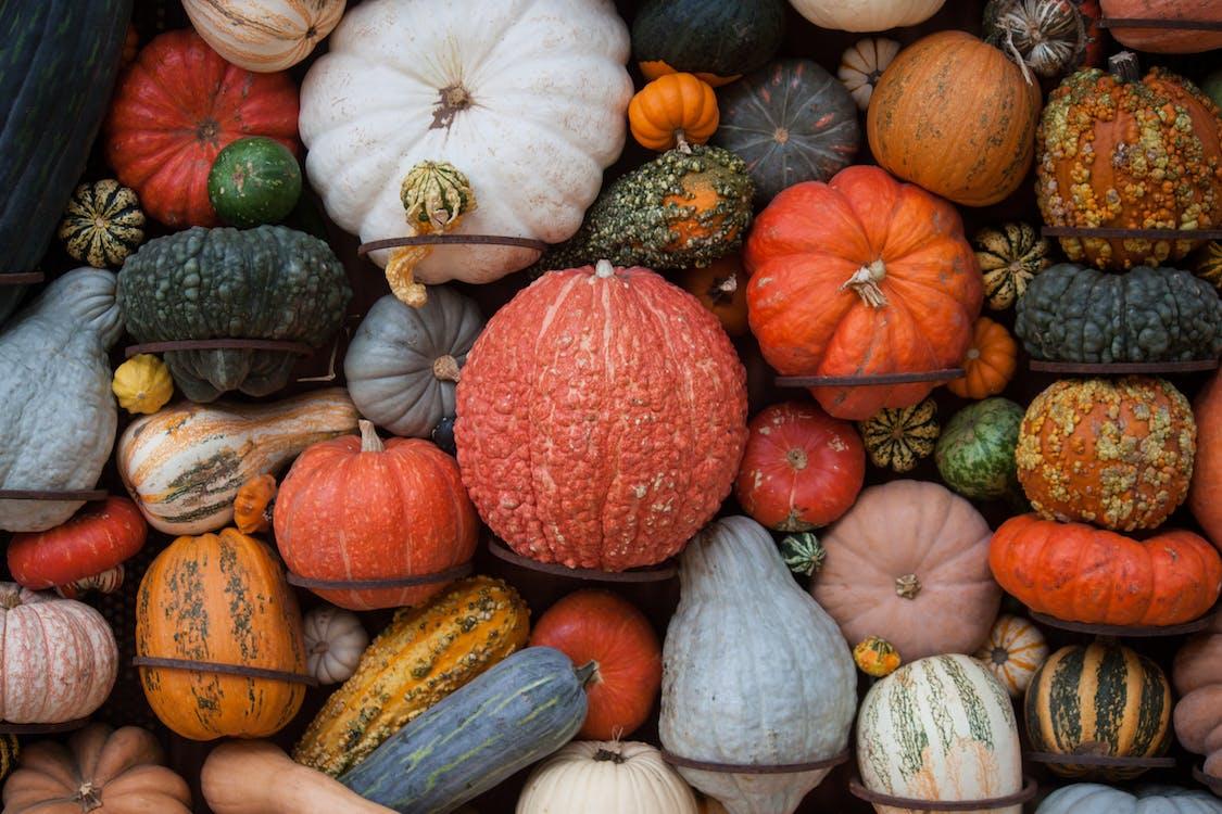 10月, オーガニック, オレンジ色の無料の写真素材