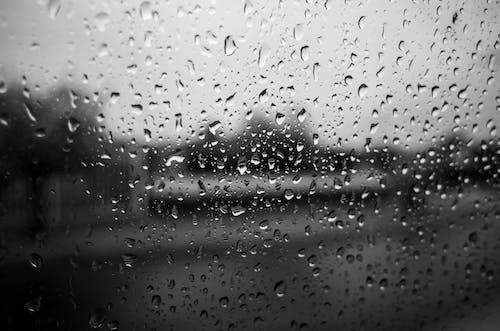 Kostnadsfri bild av bubbla, dagg, dropp, fönster