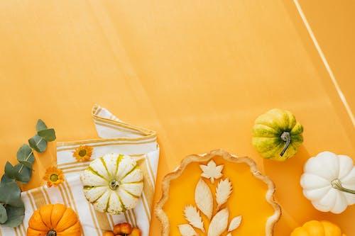 Pumpkin Pie on Yellow Surface