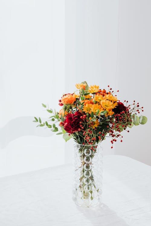 Foto d'estoc gratuïta de arranjament, arranjament floral, art