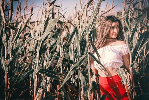 Woman in White Shirt and Red Shorts Standing Near Corn Field