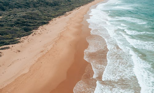 Breathtaking aerial view of powerful ocean with foamy waves washing empty wide sandy beach surrounded by lush foliage