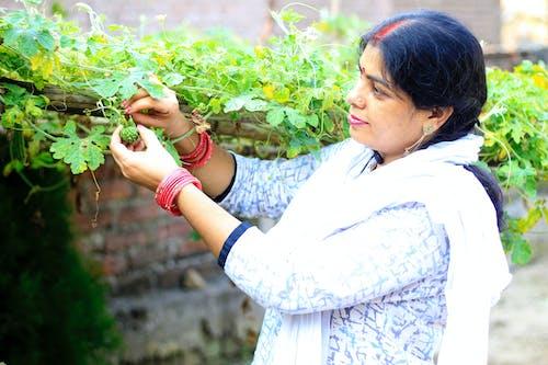 Free stock photo of patna, sunita bharti