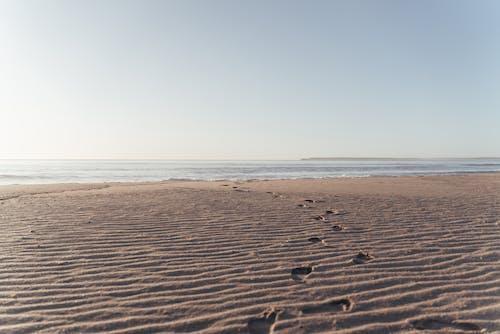 冷靜, 和平的, 和諧, 地平線 的 免費圖庫相片
