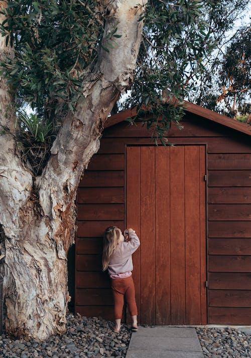 Foto d'estoc gratuïta de a l'aire lliure, arbre, bagul, banyador per a home