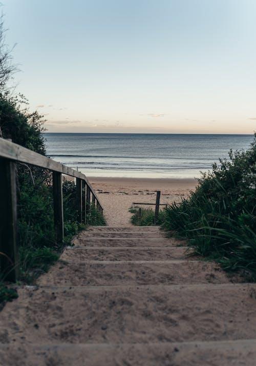 Escaleras De Playa Con Exuberantes Arbustos Verdes