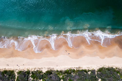 Top view of azure ocean with foamy waves washing sandy coast near green bushes on summer day in tropical resort
