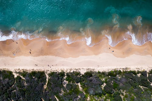 Drone view of turquoise water with foamy waves rolling on sandy seashore with green tropical plants in summer day in nature