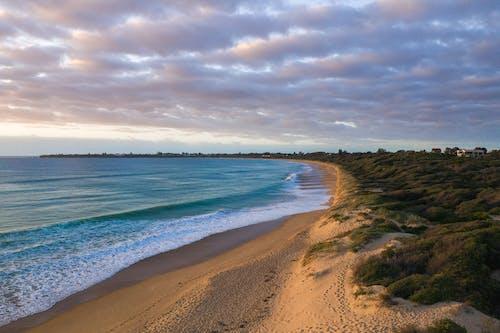 Grassy coast near waving sea
