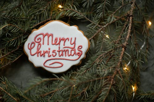 Tasty biscuit with Merry Christmas title on fir sprigs