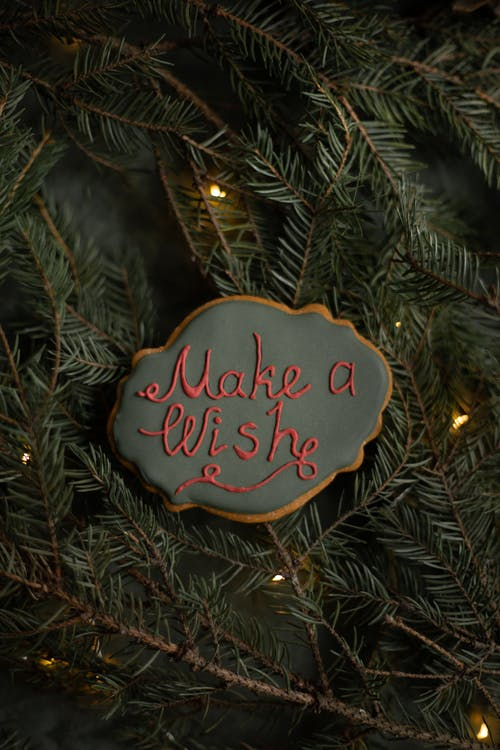 Delicious gingerbread cookie with inscription on fir sprigs