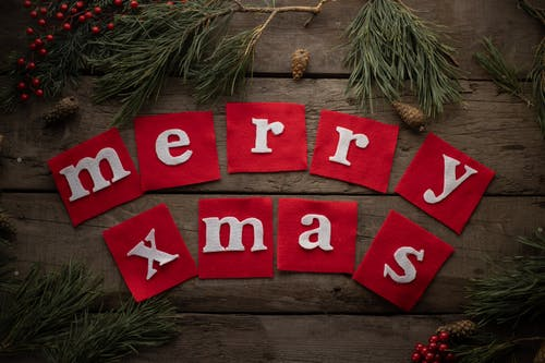 From above composition of semi circled inscription Merry Xmas on timber background framed with pine sprigs holly berries and cones