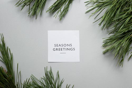 Top view of Season Greetings phrase written on greeting card placed on gray background with green spruce branches in studio