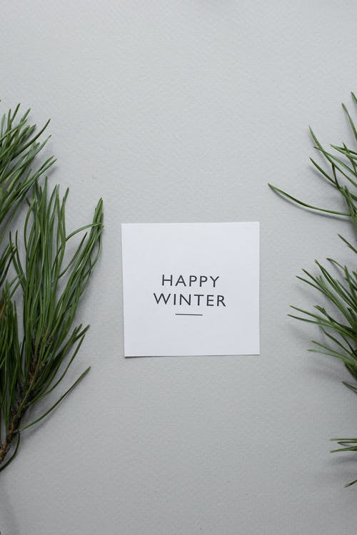 Top view of Happy Winter inscription written on white paper sheet placed on gray background with spruce twigs on gray background