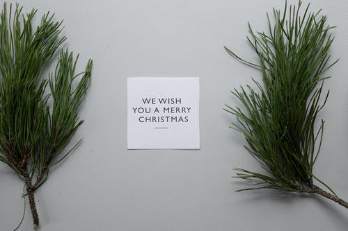 Top view composition of We Wish You A Merry Christmas inscription on white paper sheet on table with spruce twigs on gray background