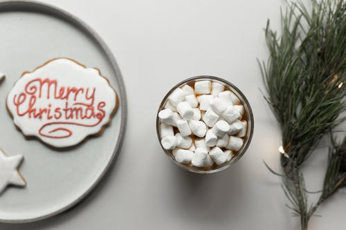 Cup of hot chocolate with marshmallows located between pine tree twig and cookie