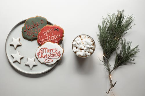 Tasty Christmas cookies placed on plate near cacao with marshmallows and coniferous branch